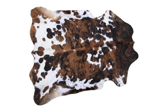 Cow Hide Rug - Texas